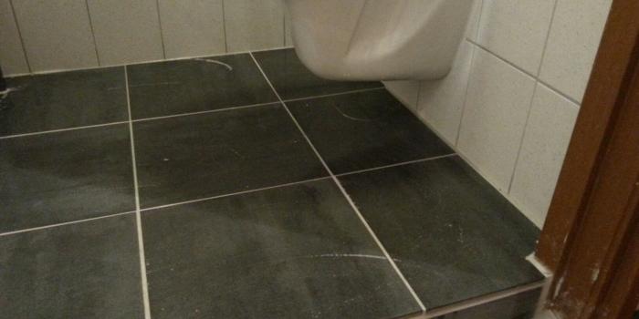 Toilet vervangen